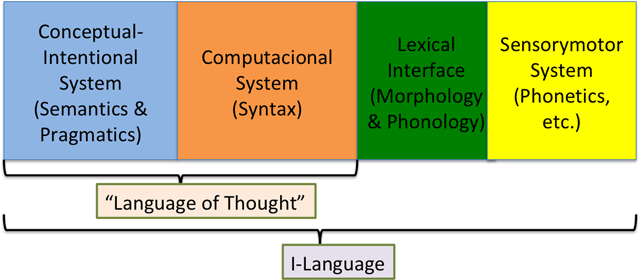 Mendvil-Gir   Did language evolve through language change? On ...