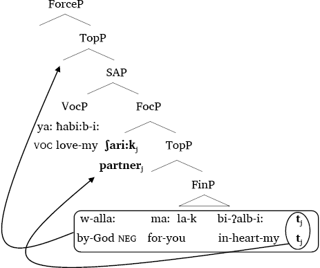 Haddad   Vocatives as parenthetical adjuncts: Evidence from Arabic ...